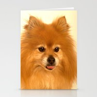 pomeranian Stationery Cards featuring Cute Pomeranian dog by Bruce Stanfield