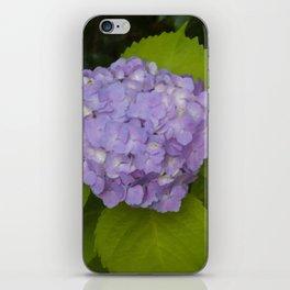 Floral Print 062 iPhone Skin