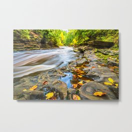 Autumn Leaves and Raging River Metal Print