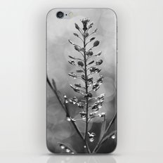Tower of Diamonds (in Monochrome) iPhone & iPod Skin