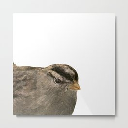 Hello Little Bird Metal Print