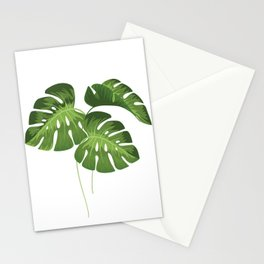 Three Monstera Leaves on White Stationery Cards