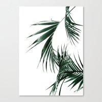 palms Canvas Prints featuring Palms by Rachel De Vita