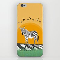 zebra iPhone & iPod Skins featuring Zebra by Nir P
