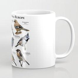 Passerine Birds of Europe Coffee Mug