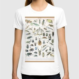 Adolphe Millot- Vintage Insect Print T-shirt