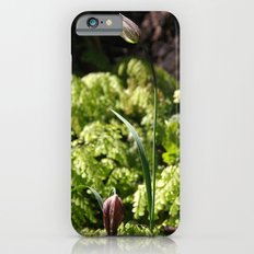 Chocolate Lilies Slim Case iPhone 6s
