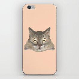 Ash the cat iPhone Skin