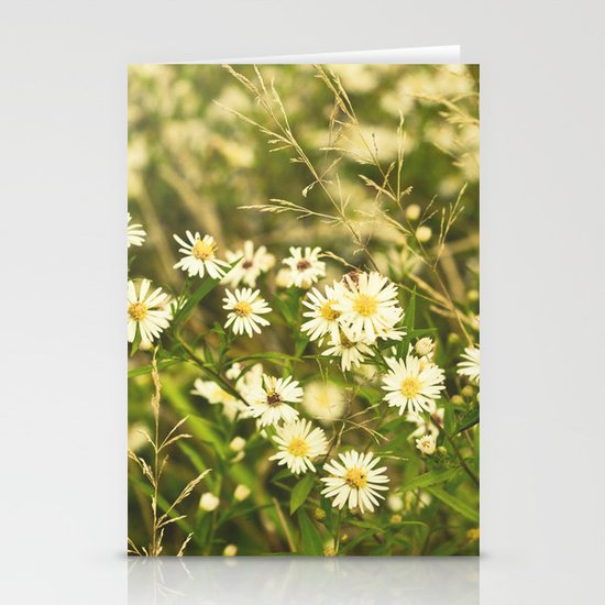Daisies in Autumn Stationery Cards