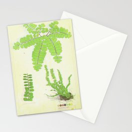 Maidenhair Fern TRIPPY Collection Stationery Cards