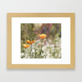 California Summer Framed Art Print
