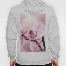 orchid in bloom Hoody