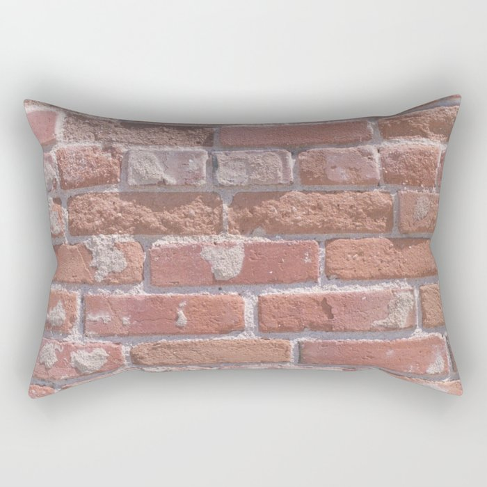 Laid in the Way Rectangular Pillow