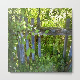 Rickety Fence Metal Print