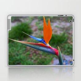 Bird of Paradise III Laptop & iPad Skin