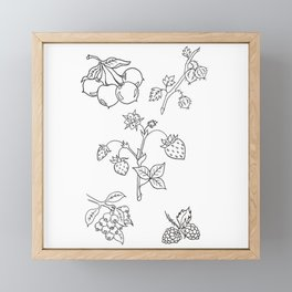 Fruit Variety Study Design — Mixed Fruits Illustration — Strawberry and other Fruits Design Framed Mini Art Print
