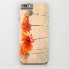 Orange Gerberas iPhone 6s Slim Case