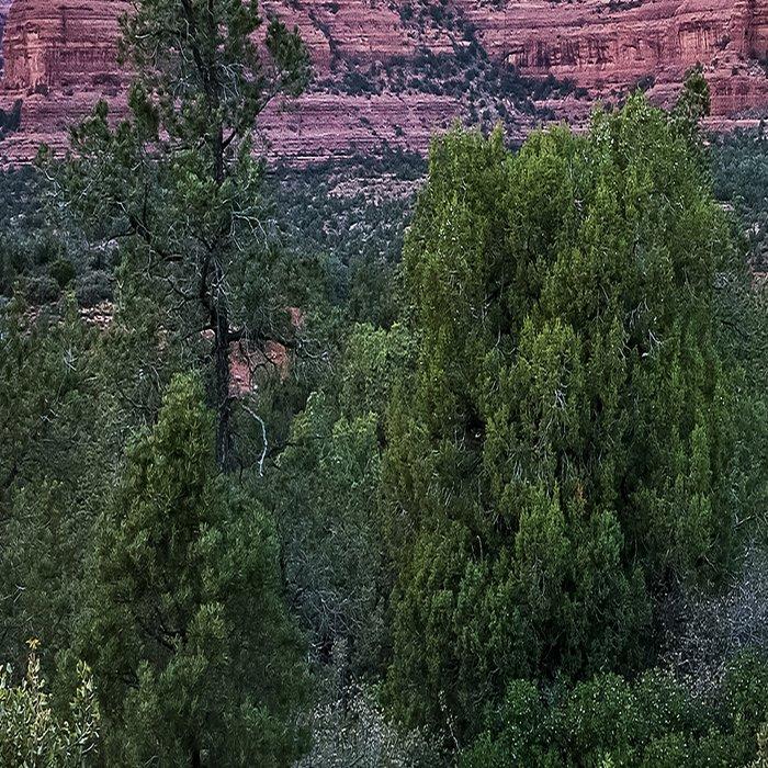 Sedona - Cool Vibes in the Desert Landscape in Northern Arizona Leggings