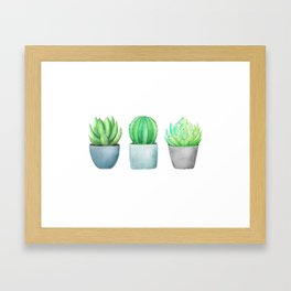 Succulent and Cacti Potted Garden Trio Framed Art Print