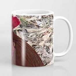 Rhode Island Red Rooster Photography Coffee Mug