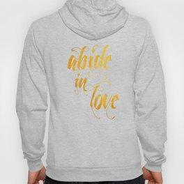 Abide in love Hoody