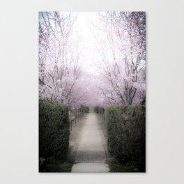Allee Canvas Print