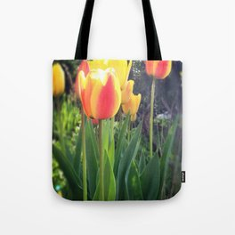 Spring Tulips in Bloom Tote Bag
