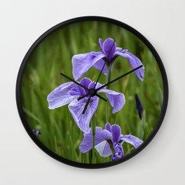 Sankeien Garden Iris Wall Clock