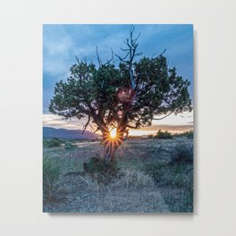 Sun Tree Hammock // Grainy Night Sunset Rays Hiking Landscape Photograph Wilderness Beauty Metal Print