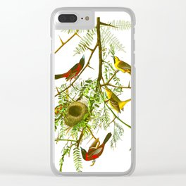 Orchard Oriole Bird Clear iPhone Case
