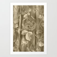 Silk with Roses and Butterflies Art Print