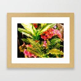 Fern Jungle Framed Art Print