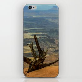 CanyonLand iPhone Skin