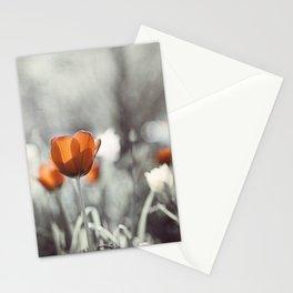 Orange Grey Tulip Photography, Burnt Orange Tulip Flowers Photo Stationery Cards