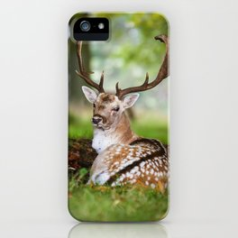 Bambi  :)  iPhone Case