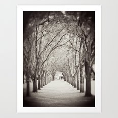 Follow the path Art Print