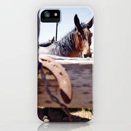 Horsehoe Blur iPhone Case