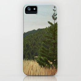 Mt. Tamalpais iPhone Case