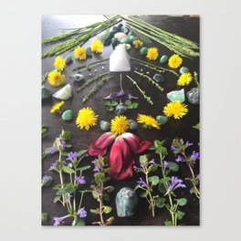 Spring's Song Canvas Print