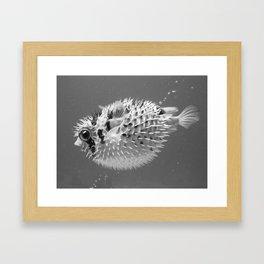 Black & white puffer Framed Art Print