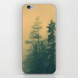 All I need iPhone Skin