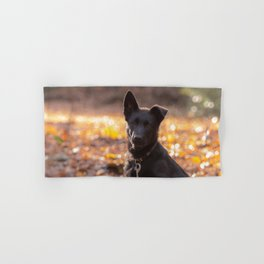 German shepherd, the black beauty Hand & Bath Towel