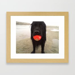 mister b and his ball Framed Art Print
