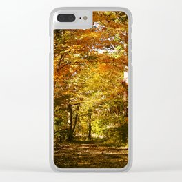 Woods Lake Trail Clear iPhone Case