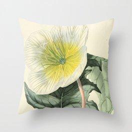 1479 Throw Pillow