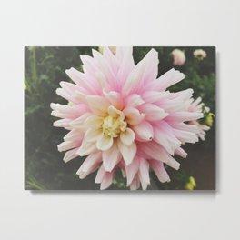 Flower #4 Metal Print