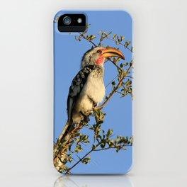 The Real Zazu iPhone Case