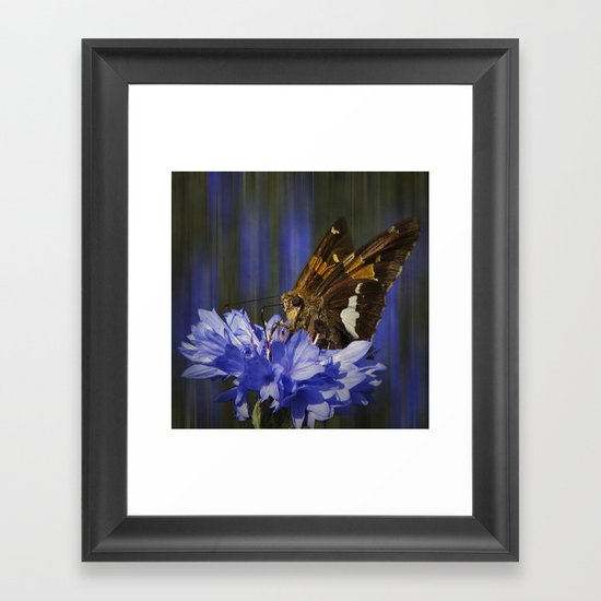 The Little Skipper Framed Art Print