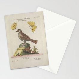 passer gutture albo3 Stationery Cards