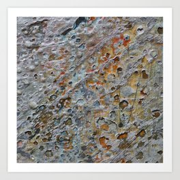Beauty By the Square Inch  - Untitled Art Print